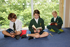Pupils reading